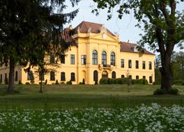 264x190 Schloss Eckartsau Panzer 170511 SA 02 1582