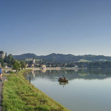 Donauradweg Bei Grein WGD Donau Oberösterreich Tourismus GmbH Hochhauser RH10651 A4