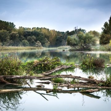 Aulandschaft Slowakei Pixabay